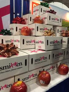 New York Produce Show 2018-DMA Solutions-Marketing4