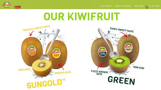 Visual Content Inspiration Zespri-DMA Solutions