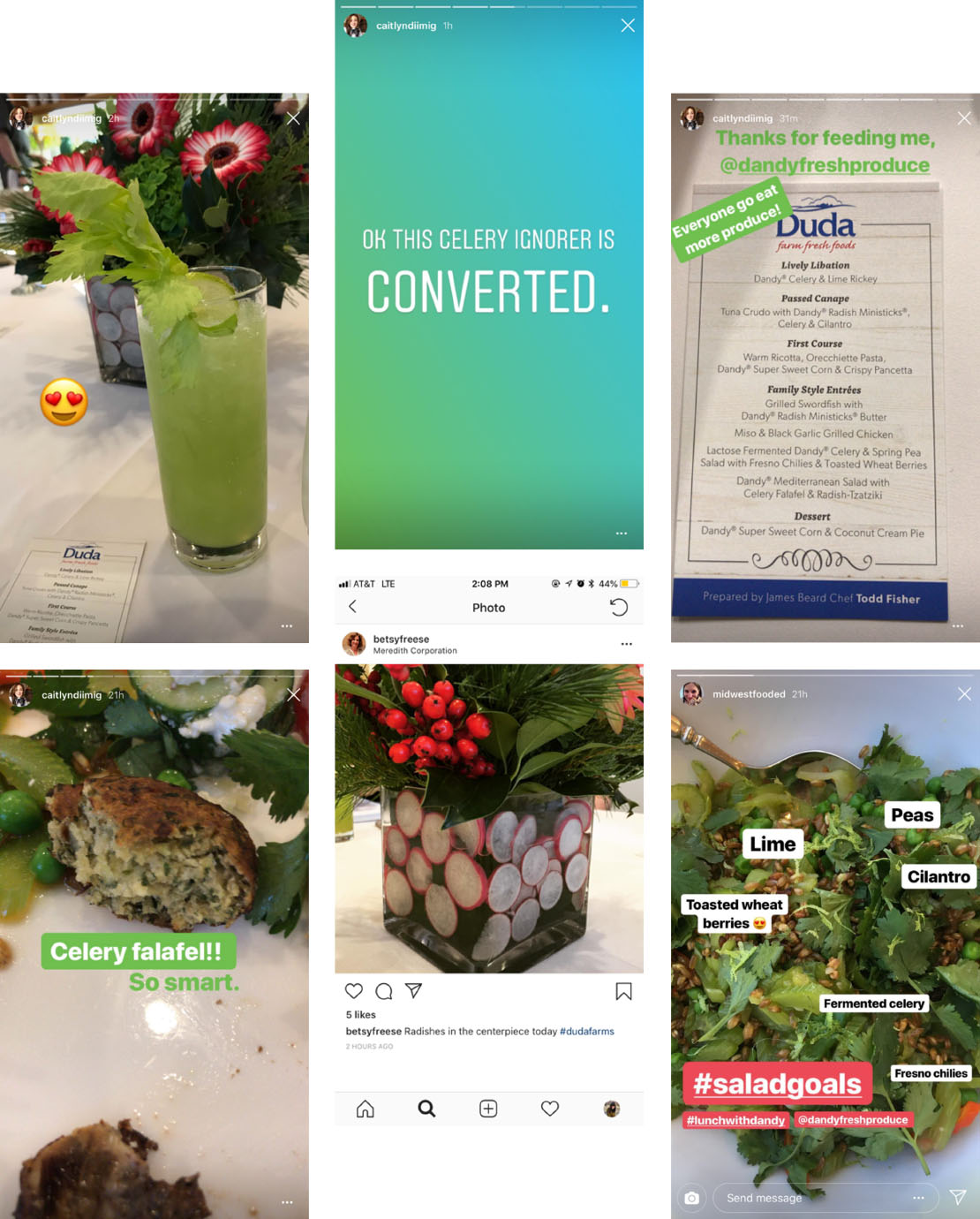 collection of social media posts about Duda Farm Fresh Foods